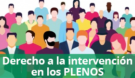 Intervención no Pleno Municipal